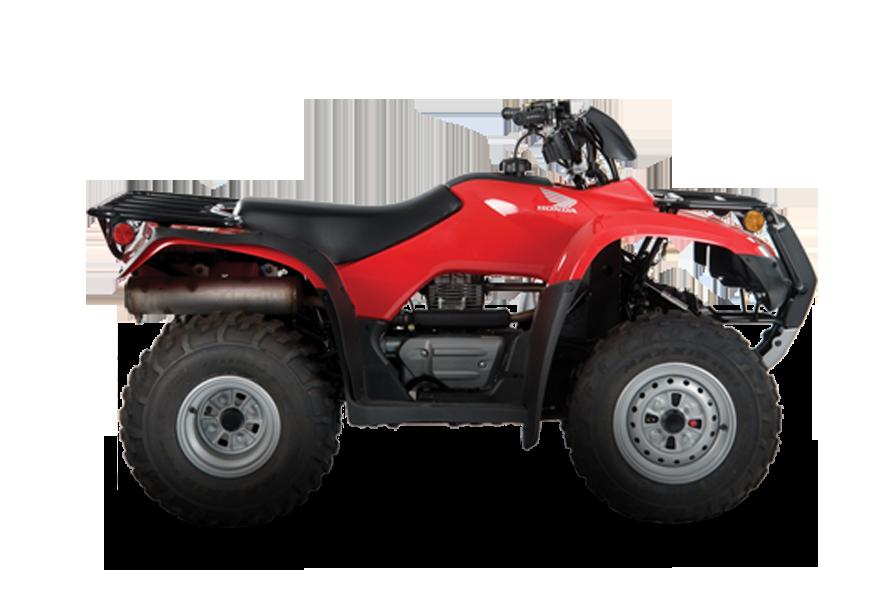 TRX 250 TM